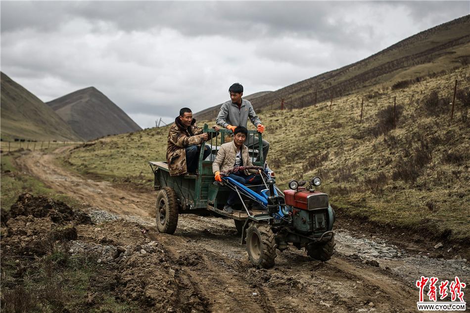 2017年5月22日,青海省果洛藏族自治州达日县上红科乡哈青村,几名易地扶贫搬迁项目上的工人。由于路况不好,他们有些时候会经常选择用拖拉机拉货。中国青年报·中青在线记者 赵迪/摄